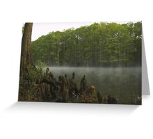 Morning on the Bayou Greeting Card