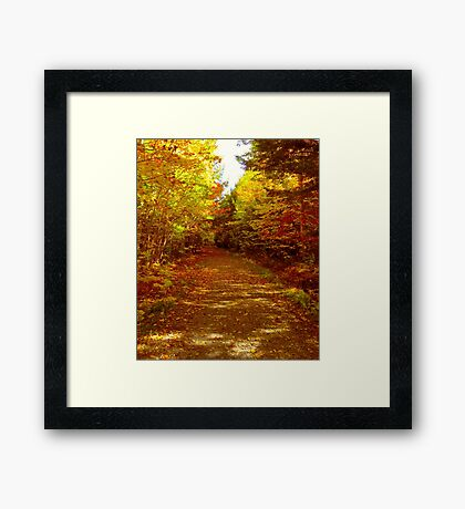 A Walk With Nature Framed Print