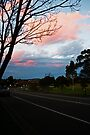 A Sunset Drive by Evita