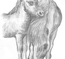 Shetland pony and foal by mindgoop