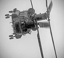 Wokka Wokka 3 !! - Airbourne 2014 BW by Colin  Williams Photography