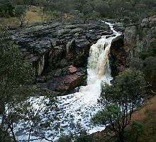 Nigretta Falls by WendyJC