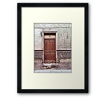 The old brown door Framed Print