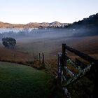 Early Morning by Paul Barnett