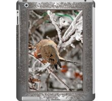 Mourning Dove in the Ice Storm iPad Case/Skin