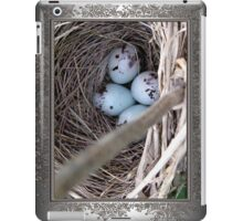 Four Red-Winged Blackbird Eggs iPad Case/Skin