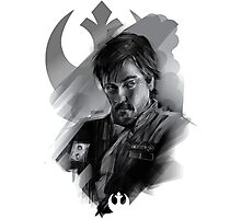 rogue one Photographic Print