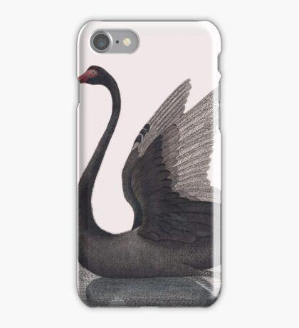 The Black Swan iPhone Case/Skin