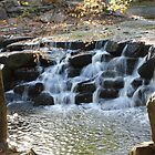 Cascade - Virginia Water by PhotogeniquE IPA