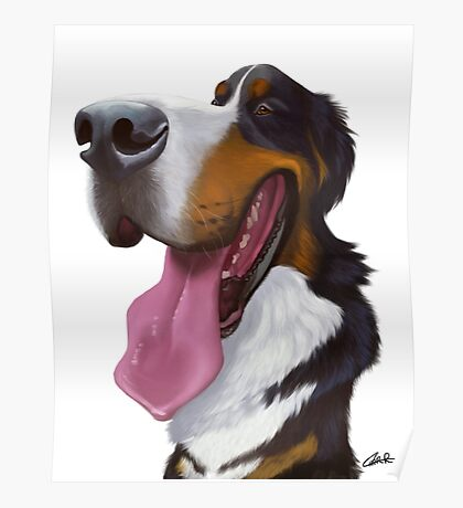 Bernese Mountain Dog Caricature Poster