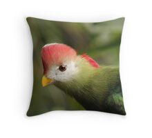 At Bird Kingdom Throw Pillow