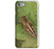 Grasshopper   iPhone Case/Skin