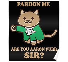 pardon me are you aaron purr sir? Poster