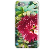 Light on a Red Flower 2 iPhone Case/Skin