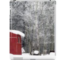 Morning frost iPad Case/Skin