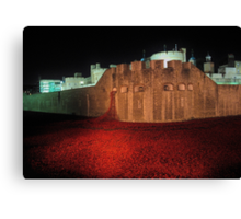 Poppies at the Tower of London - At Night #2 Canvas Print