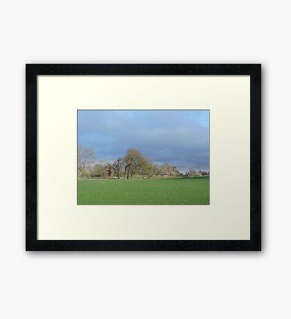 January Skies Framed Print