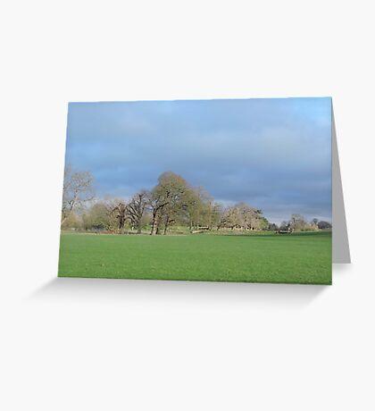 January Skies Greeting Card