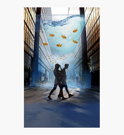 Urban Fish Bowl, aquarium Photographic Print