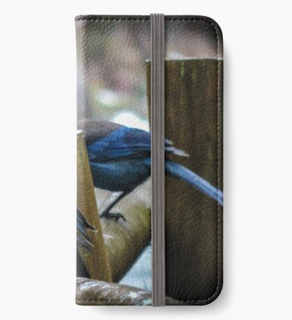 Stellar Jays on a drizzly afternoon iPhone Wallet/Case/Skin