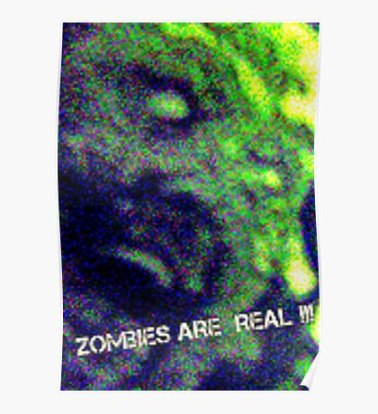 Zombies Are Real  Poster