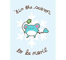 Marill Christmas Photographic Print