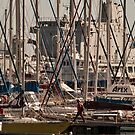 Cannot see the boats for the masts by awefaul