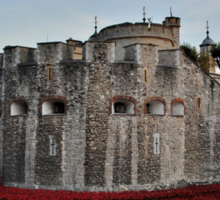 Poppies at the Tower of London - In the evening Sticker