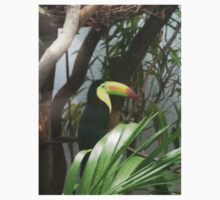 Keel-Billed Toucan Kids Clothes