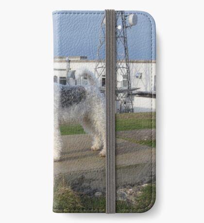 Bess Terrier iPhone Wallet/Case/Skin