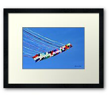 Dip and Dive, Wild and Free Framed Print