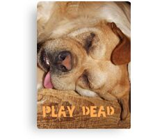Play Dead... Canvas Print