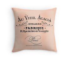 Vintage Antique Shop Sign Parisian Throw Pillow