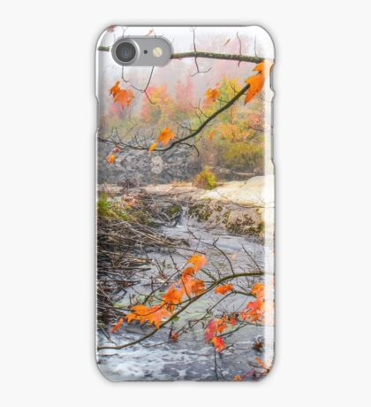 Misty Morning, Algonquin Park  iPhone Case/Skin