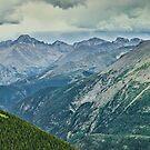 Elk And Longs Peak by nikongreg