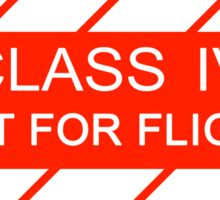 NASA - CLASS IV Not For Flight Sticker