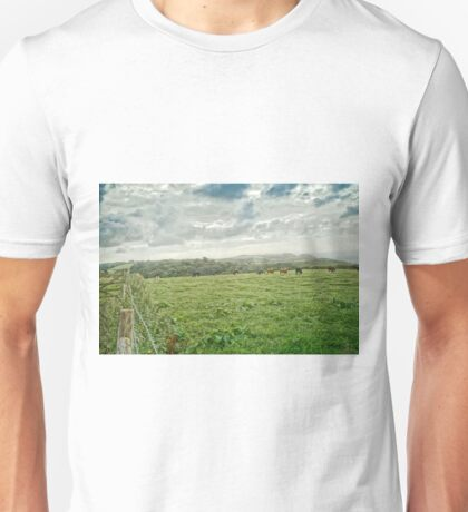 Cows in cloudy field Unisex T-Shirt