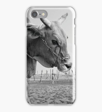 Taiwanese Water Ox iPhone Case/Skin