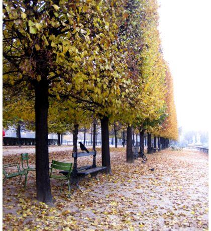 Parisian Tree Line Sticker