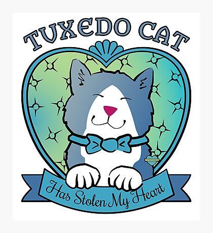 Tuxedo Cat Has Stolen My Heart Photographic Print