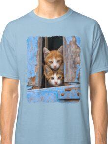 Cute Cat Kittens in a Blue Vintage Window Classic T-Shirt
