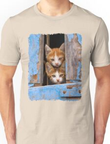 Cute Cat Kittens in a Blue Vintage Window Unisex T-Shirt