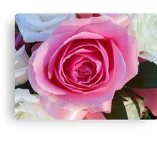 Pink Rose and Ribbon Canvas Print