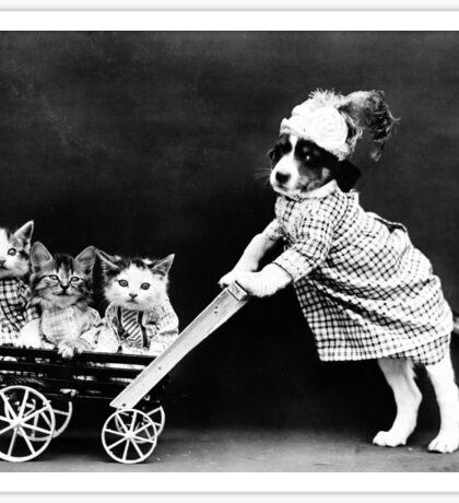 Puppy Taking Kittens for a Walk Sticker