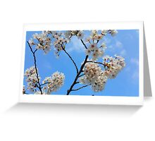 White flowers under a blue sky Greeting Card