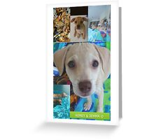 """We just adopted """"Honey and Jemma""""♡  Greeting Card"""