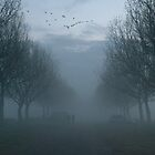 Geese and Fog, a Winter evening. by Billlee
