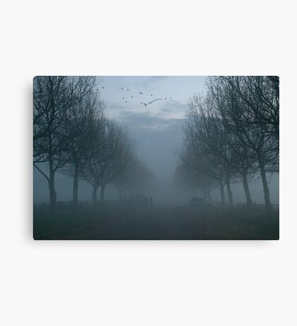 Geese and Fog, a Winter evening. Canvas Print