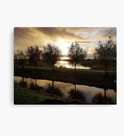 landscape trees Canvas Print