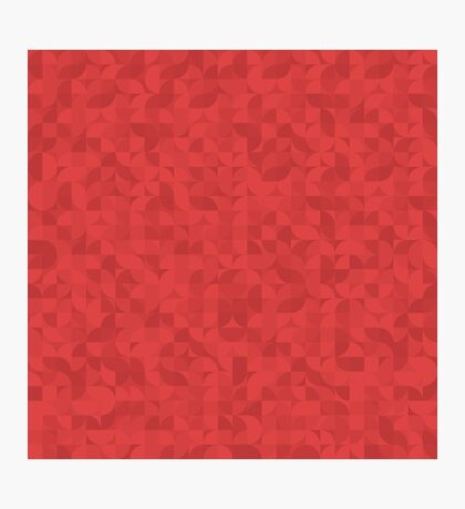 Segmented Seamless Subtle Shades of Red Photographic Print